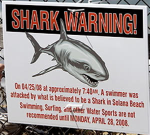 solana_beach_shark_attack_warning_sign