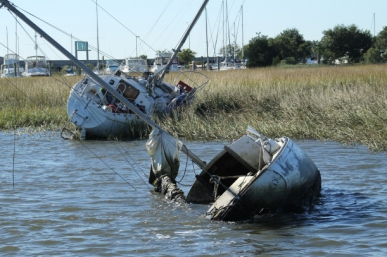 advs-rest-in-charleston-harbor-watershed-photo-cred-sc-sea-grant